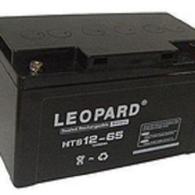 美洲豹LEOPARD蓄电池H